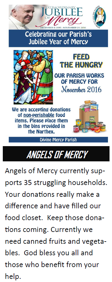 2016-november-angels-of-mercy